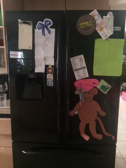 kitchen fridge one