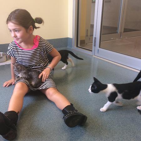 Amma and Kitten